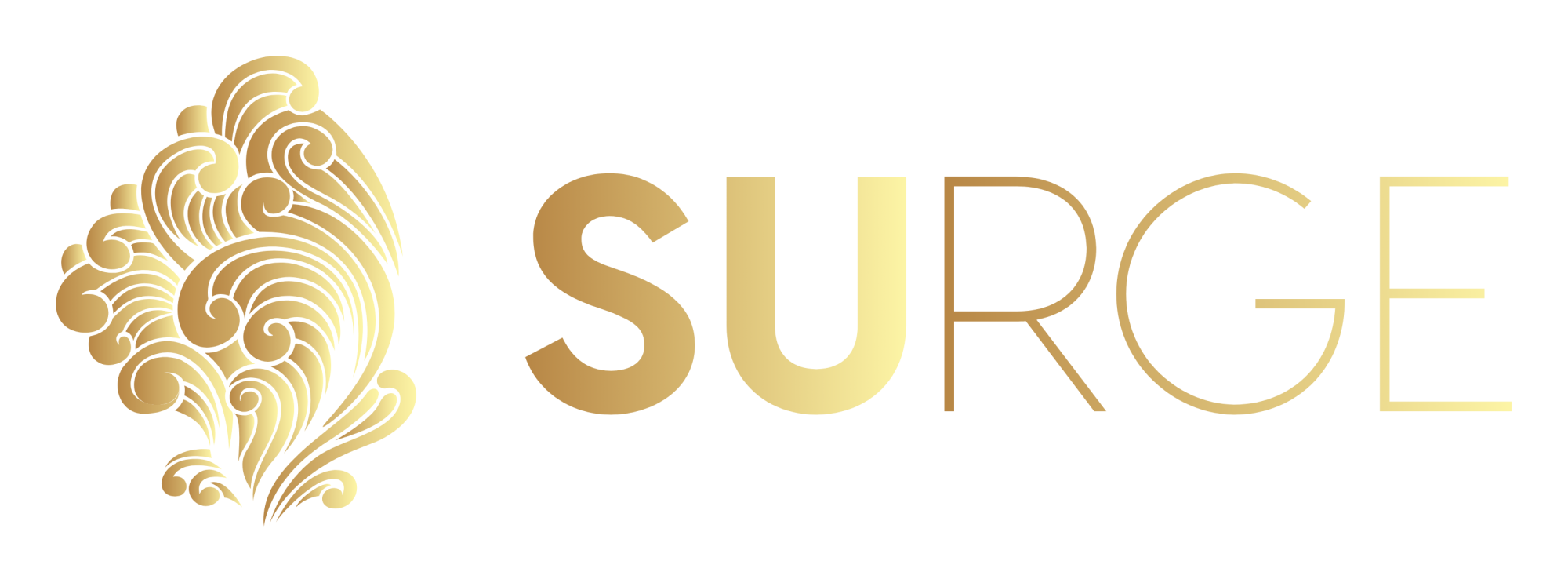 Surge Digital Agency