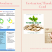 Pinterest Pins and Grapics Design : Trifold Brochure and Invitation cards